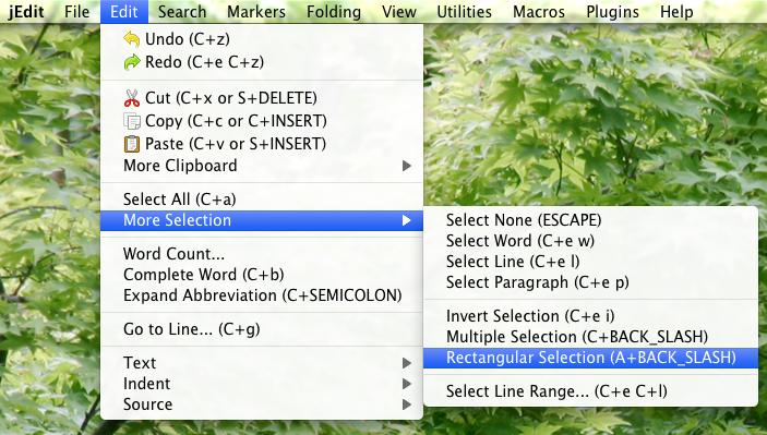 jEdit menu for Rectangle Selection